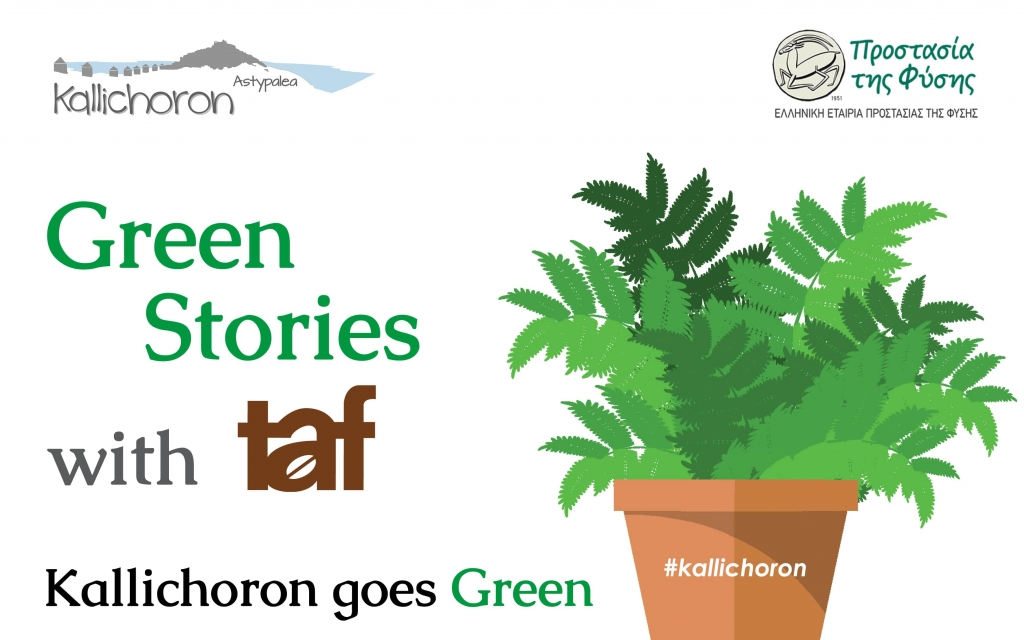 Kallichoron Green Stories with Taf